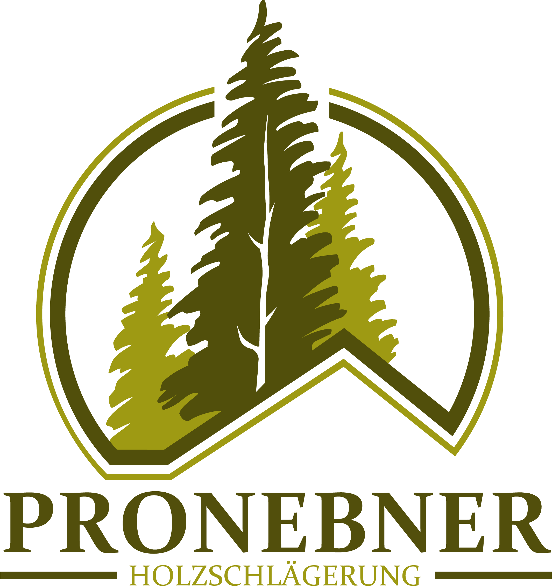 Logo Pronebner Michael